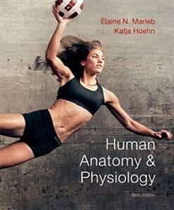 Human Anatomy & Physiology (9th Edition) (Marieb, Human Anatomy & Physiology)